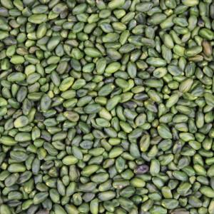 pistaches vertes décoriquées